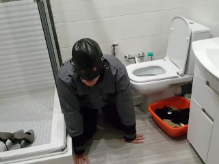 Sub cleans rigorous wifey Mia after rest room. Analingus messy pussu gobbling.